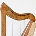 Custom 21 string harp (detail)